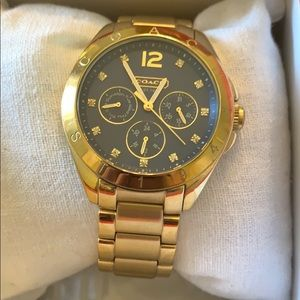 Gold Coach Watch with Blue Face